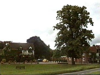 The Crown and the Jubilee Tree